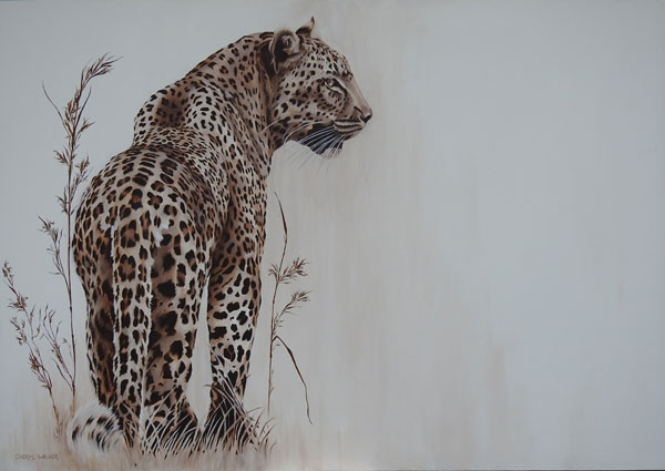 Ingwe - This beautiful boy which I have named  'Ingwe' (which is Zulu for Leopard) was painted from a photograph taken by Angie Lang.He is a magnificent example of the muscular power of these elusive animals.   I used traces of indigenous KwaZulu Natal grass to enhance his presence.