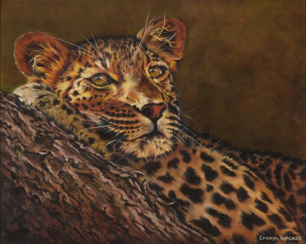 Leopard - SOLD