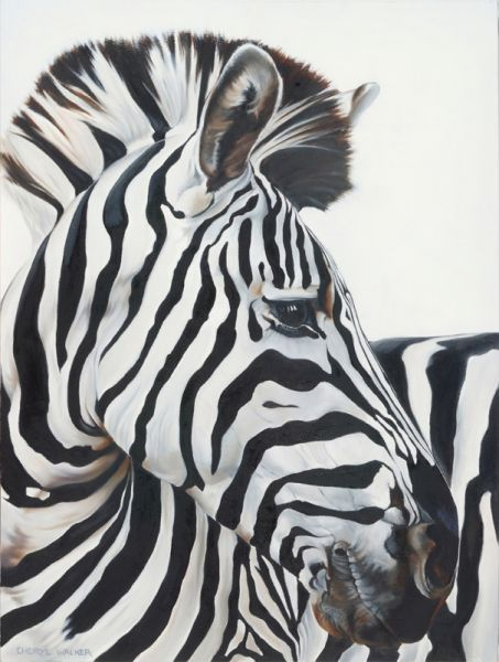 Zebbie - Zebbie, painted from a photo of a Zebra in the Hluhluwe Game Park, KwaZulu Natal, SAfrica. Cropped and close up to show how majestic these seemingly dull animals actually are.