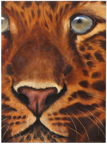 Close Up - A fun closeup of a young leopard - done in Oil.  The textured effect of the subject glistens under a spotlight.
