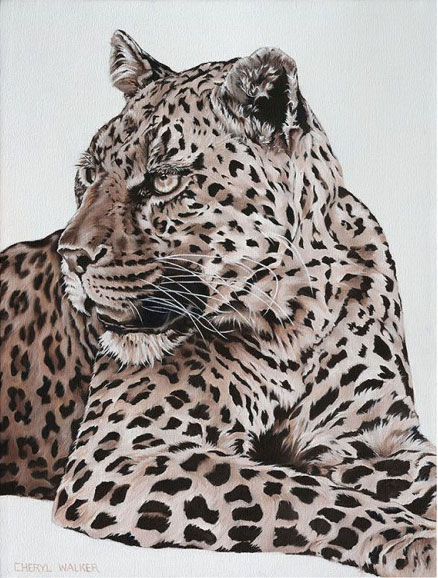 Leopard one - This handsome chap was painted from a photograph taken at Mashatu, Botswana.    I believe you should 'feel' the animal as you paint - so hope I have captured the element of his 'panting' in this one.SOLD
