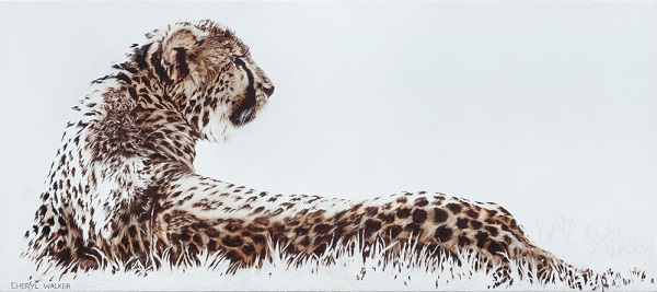 Catching the rays - Cheetah relaxing in the sun. Painted from photo courtesy of Cheetah rehab
